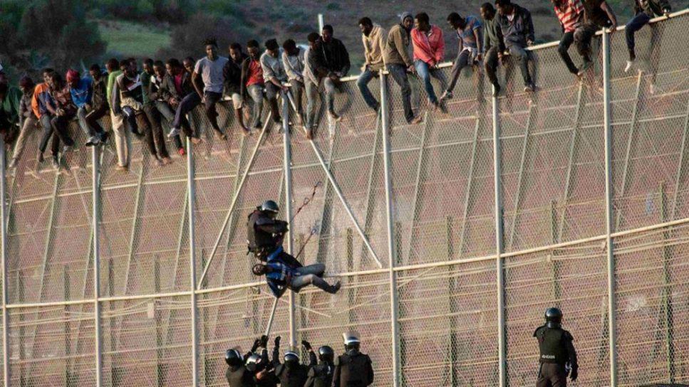 Immigrants1.jpg